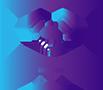 Icon Partner Portal